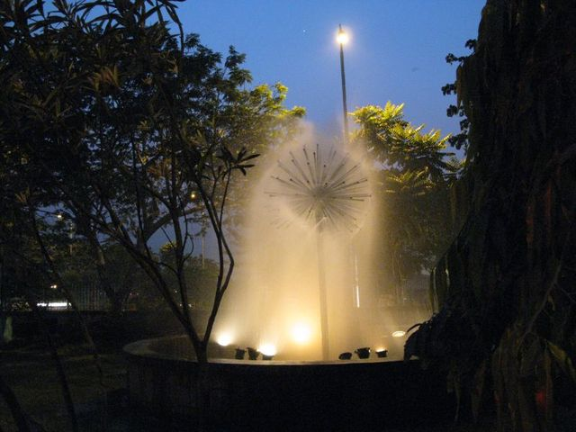 Image of Tree e009