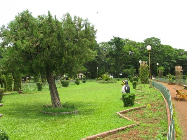 Image of Tree g007