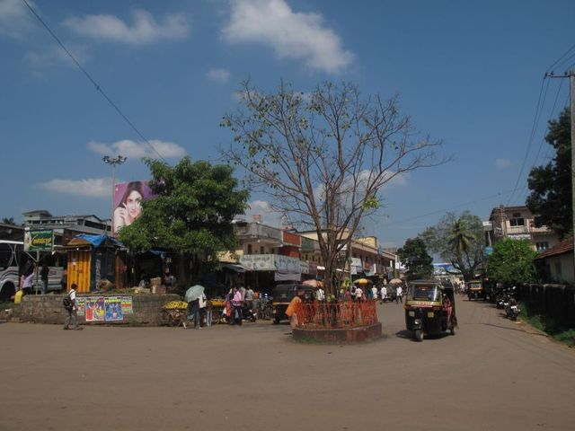 Image of Tree k044