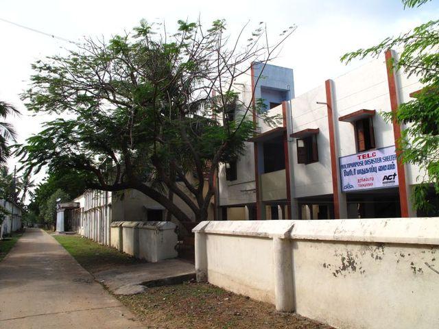 Image of Tree n045